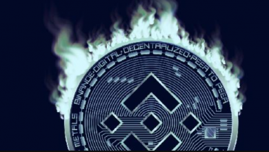 Photo of Binance Coin (BNB) surges amid talk of accelerated coin burn