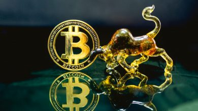 Photo of As Bulls take charge, BTC Price prepares for another sprint towards $42K