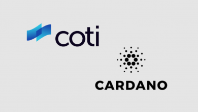 Photo of The Fruit Bearing Relationship between Cardano and COTI