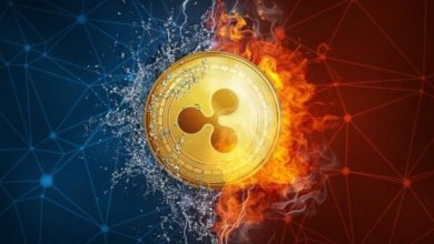 Photo of Ripple pitches new role for XRP holders as SEC refuses clarity for secondary market