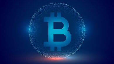 Photo of Digital Currencies Issued by Central Banks Would Prevail – The Bitcoin Bubble Is Self-Fulfilling