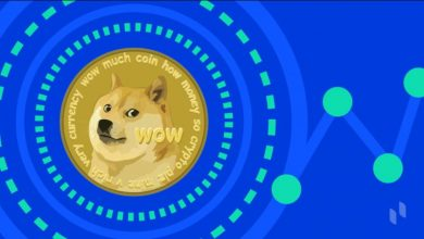 Photo of Institutional investors aren't interested in Dogecoin so that it could be a joke