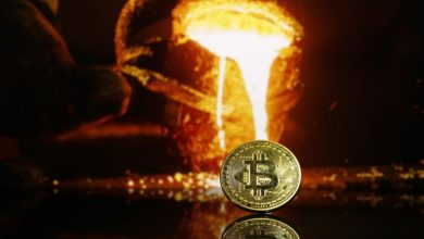 Photo of As an inflation hedge, Institutions Prefer Crypto To Gold