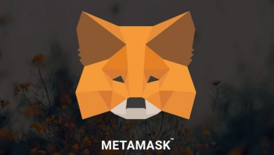 Photo of A new phishing bot has been discovered, according to MetaMask