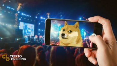 Photo of Dogecoin Music Festival Gets Backing From Elon Musk
