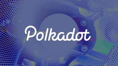 Photo of Huge Milestone For Polkadot As First Functional Parachain Goes Live