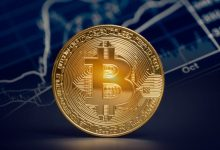 Photo of According to a poll, the number of Bitcoin investors has more than quadrupled since 2018