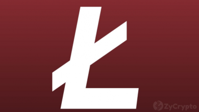 Photo of What Litecoin's Downfall Teaches About The Lifespan Of Other Altcoins