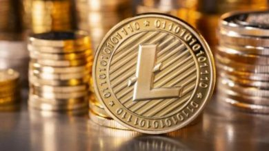 Photo of LTC steadily rises to a new high of $157.5, indicating a possible reversal