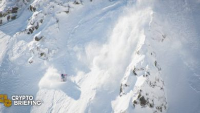 Photo of Avalanche Breaks All-Time High on News of $230M Raise