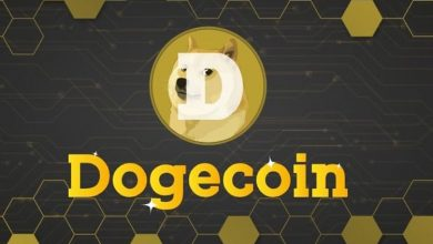 Photo of Dogecoin has been converted into stock, with a market value of $577 million