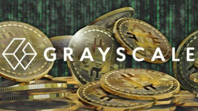 Photo of The CEO of Grayscale believes the SEC's position on the Bitcoin ETF is wrong