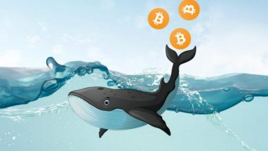 Photo of Whales Hold Bitcoin (BTC) After Pump and Dump Signals, According to Santiment Data