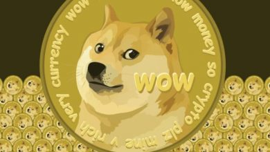 Photo of After a 200% rally, Shiba Inu Dog Coin encounters opposition