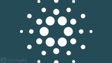 Photo of Cardano At Risk Of Slipping Down The Rankings — Could Prove Fatal For ADA