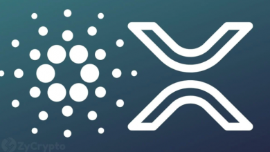 Photo of Survey: XRP Is The Most Loved Cryptocurrency In The UK, Followed By Cardano