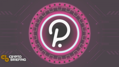 Photo of Polkadot Community Approves Parachain Auctions